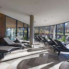 Wellness & Spa hotel Villa Regenhart-Jeseník-pobyt-Medical Wellness Exclusive