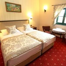 Pri Mlyne Boutique Hotel & Restaurant, Lozorno 40879236
