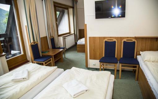 Parkhotel Harrachov 1153855689
