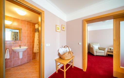Hotel Akademie Naháč 1154106909
