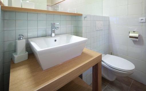 Hotel Líšeňský Dvůr 1157463247
