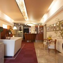 Hotel Zlatá Hvězda Litomyšl 40614268