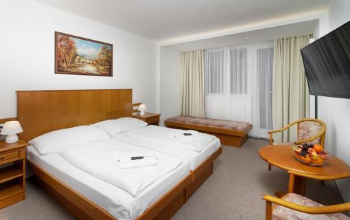 Wellness Hotel Astra superior 1151702737