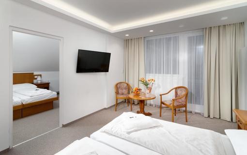 Wellness Hotel Astra superior 1151702739