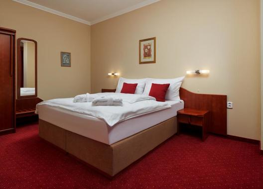 Wellness-Hotel-Lužan-3