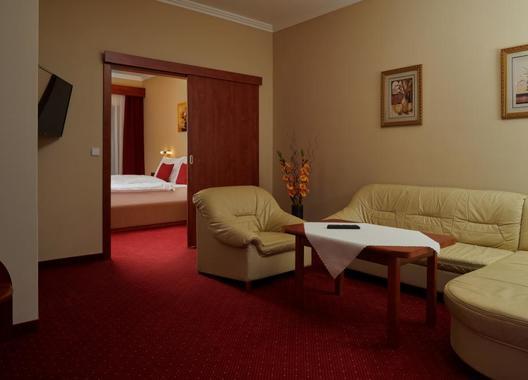 Wellness-Hotel-Lužan-18
