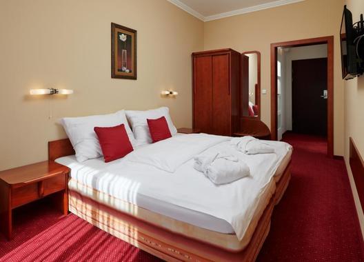 Wellness-Hotel-Lužan-2