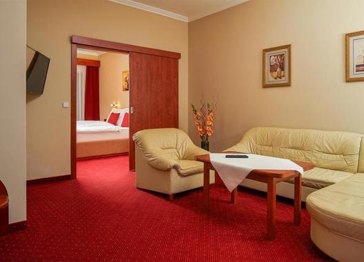 Wellness-Hotel-Lužan-9