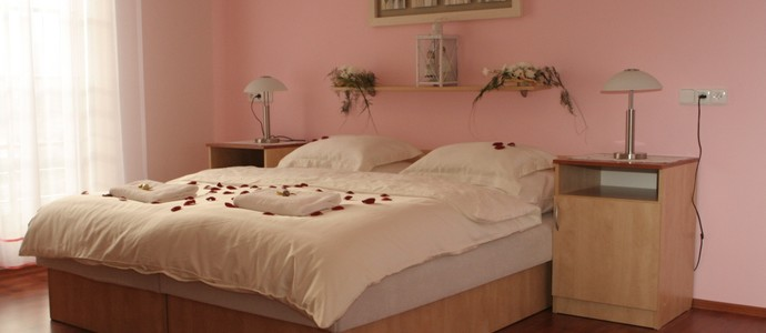 Hotel Dělnický Dům Odry 1118016254