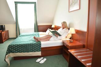 Hotel Komorní hůrka Cheb 44576146