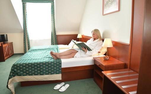 Aktiv-Hotel Komorní hůrka 1154110205