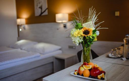HOTEL VEGA 1155219145
