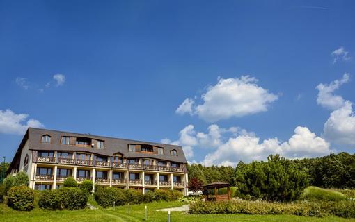 HOTEL VEGA 1155219217
