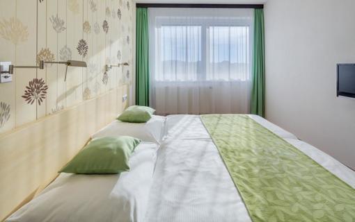 HOTEL SKALSKÝ DVŮR 1155219593
