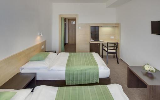 HOTEL SKALSKÝ DVŮR 1155219621