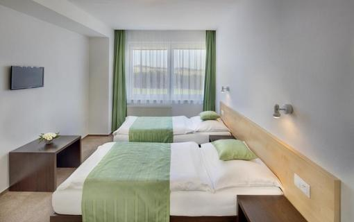 HOTEL SKALSKÝ DVŮR 1155219619