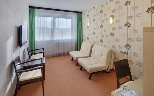 HOTEL SKALSKÝ DVŮR 1155219637