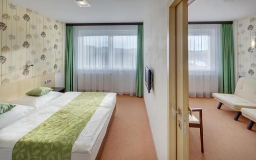 HOTEL SKALSKÝ DVŮR 1155219635