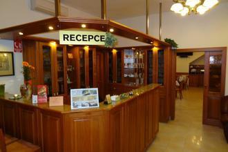 Hotel Pegas Brno 38710922
