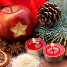 Penzion Grasel-Nové Syrovice-pobyt-Vánoční pobyt Apartmány