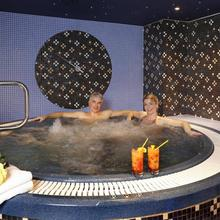 HOTEL SPA SMETANA - VYŠEHRAD Karlovy Vary 45762272