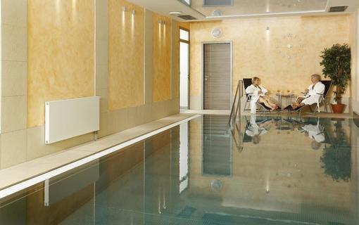HOTEL SPA SMETANA - VYŠEHRAD 1151969387