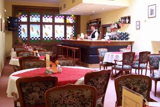 HOTEL SPA SMETANA - VYŠEHRAD Karlovy Vary 41250438