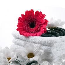 Design hotel RomantiCK-Třeboň-pobyt-Květinová relaxace