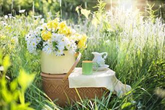Třeboň-pobyt-Romantické léto
