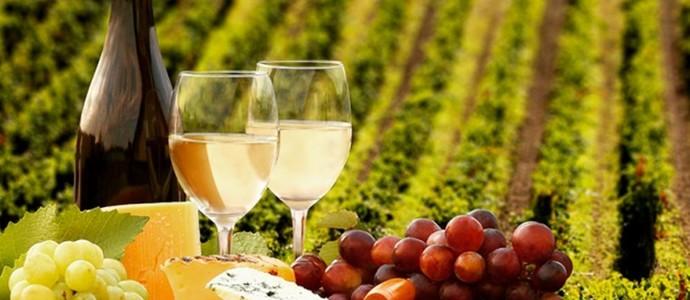 Hotel Savannah-Znojmo-pobyt-Vinařský balíček