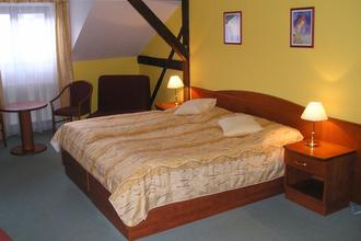 Hotel ANNA Nejdek 39210086