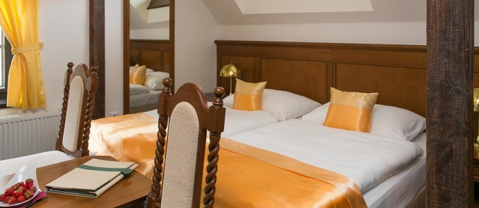 Hotel GOLD Český Krumlov 1157487377