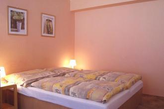 Penzion ALPINA Liberec 49475014
