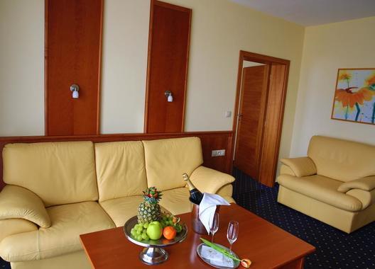 PRIMAVERA-Hotel-&-Congress-centre-6