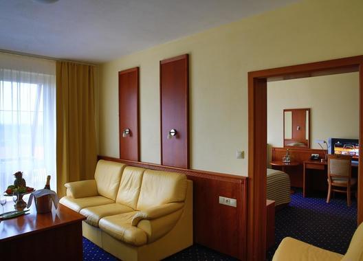 PRIMAVERA-Hotel-&-Congress-centre-7