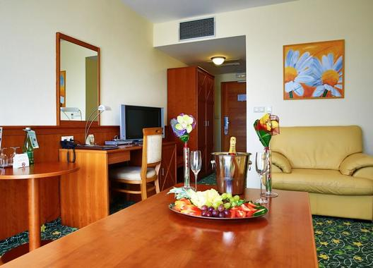 PRIMAVERA-Hotel-&-Congress-centre-61