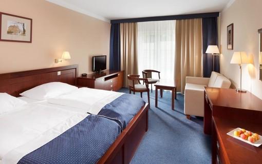 Wellness pobyt-Hotel Francis Palace 1151658439