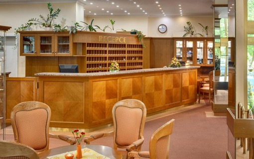 Klasický léčebný pobyt-Vltava Ensana Health Spa Hotel 1154649619