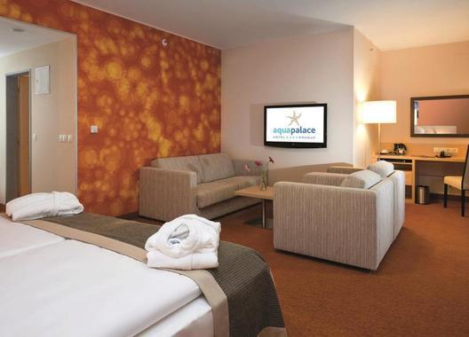 Aquapalace-Hotel-Prague-8