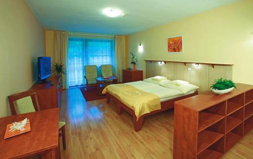 Wellness hotel Ambra 1155983583