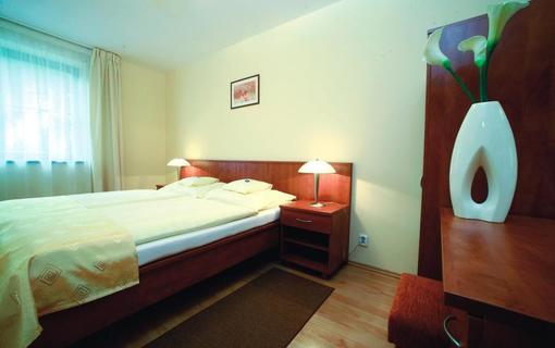 Wellness hotel Ambra 1155983587