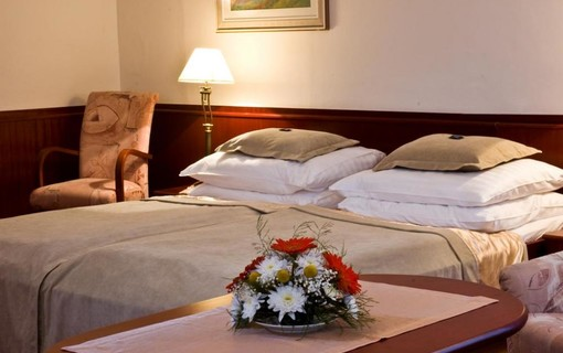 Rekondiční pobyt po Covidu-19-MONTI SPA HOTEL 1155007705
