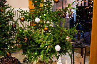 Františkovy Lázně-pobyt-Vánoce v Monti Spa