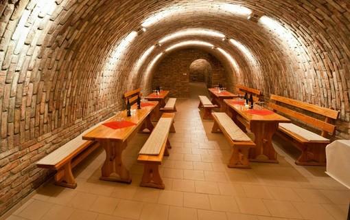 Vinařský pobyt na 2 noci-Hotel APOLLON 1151564073