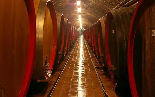 Vinařský pobyt na 2 noci-Hotel APOLLON 1151564137