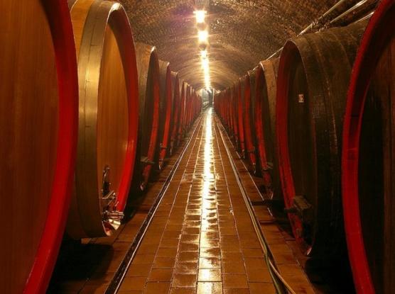 Vinařský pobyt v Hotelu Apollon ve Valticích (2 noci)-Hotel APOLLON 1155085735