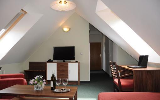Hotel APOLLON 1156729589