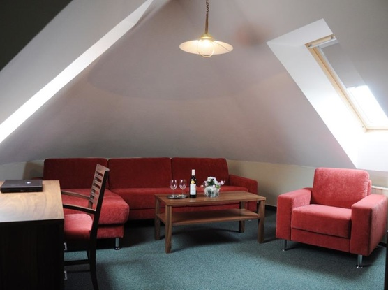 Hotel APOLLON 1155085649