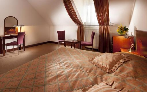 Hotel Concertino Zlatá Husa 1155007933