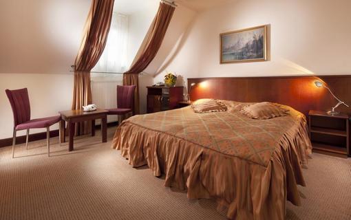 Hotel Concertino Zlatá Husa 1155007931